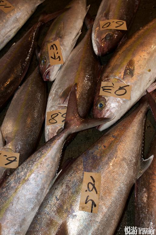"""""""不像筑地只是拍卖金枪鱼,这里是五点之前到的货都进行拍卖。季节好的时候每天能有三五百箱渔获,每箱大..."""