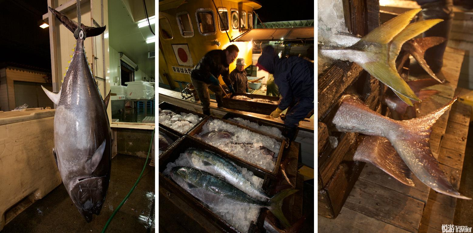 凌晨两点半,位于长崎市郊区的长崎鱼市场已经在漆黑的夜中开启了新一天的工作序幕。因时间还早,此时的活...