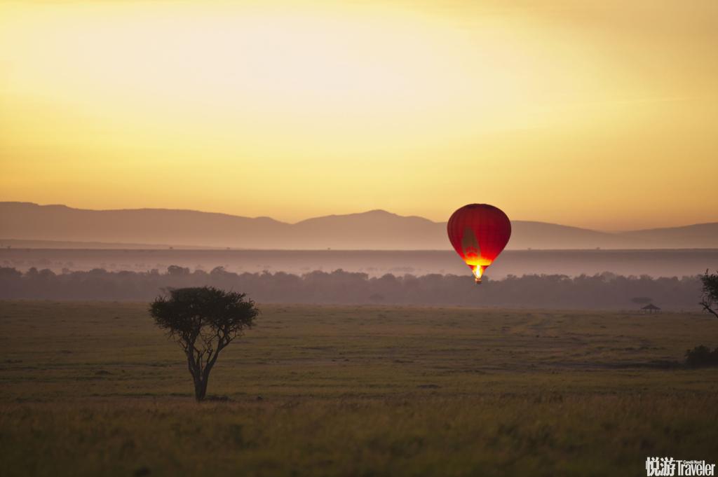 肯尼亞馬賽馬拉清晨乘坐熱氣球在寧謐平靜的晨曦中,穿過非洲這片原始土地的大草原和河流。數以千計的斑馬...