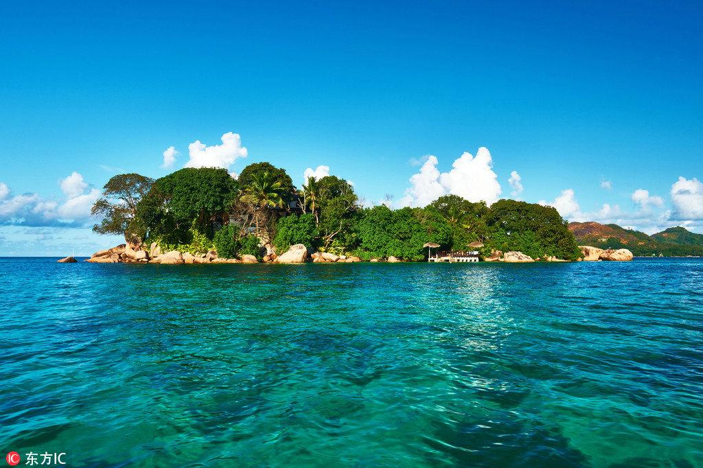 纯白沙滩,椰林密布,清风徐徐,美丽珍贵的海鸟,淘气玩耍的热带鱼,热辣辣的太阳,热爱音乐的克里奥尔族,清新又辛辣的美食,来这儿跨年真是极好的!