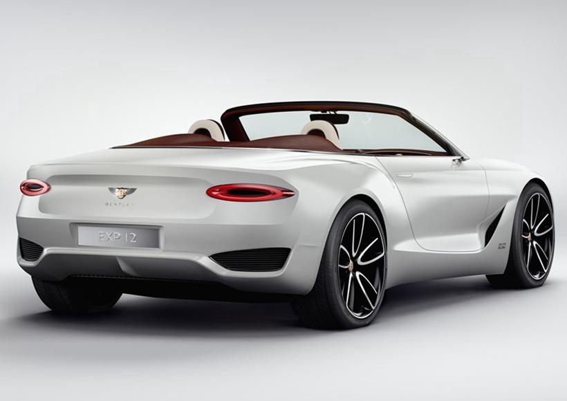 这台概念车采用敞篷的车身结构,车身不乏一些经典的宾利家族元素,诸如椭圆形的LED尾灯。黑色的进气格栅与白色车身相间,充满运动感。