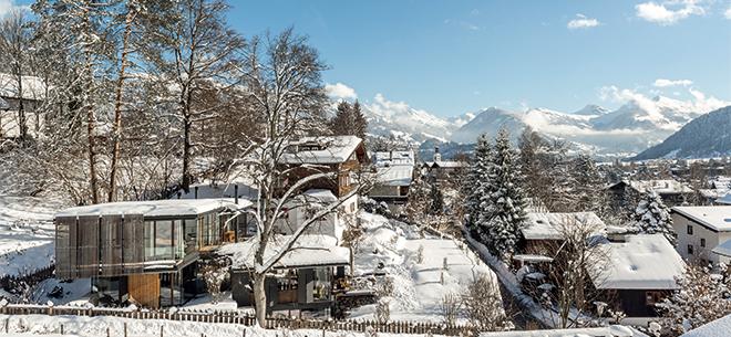 你好,阿尔卑斯山!ALPINE WOODS