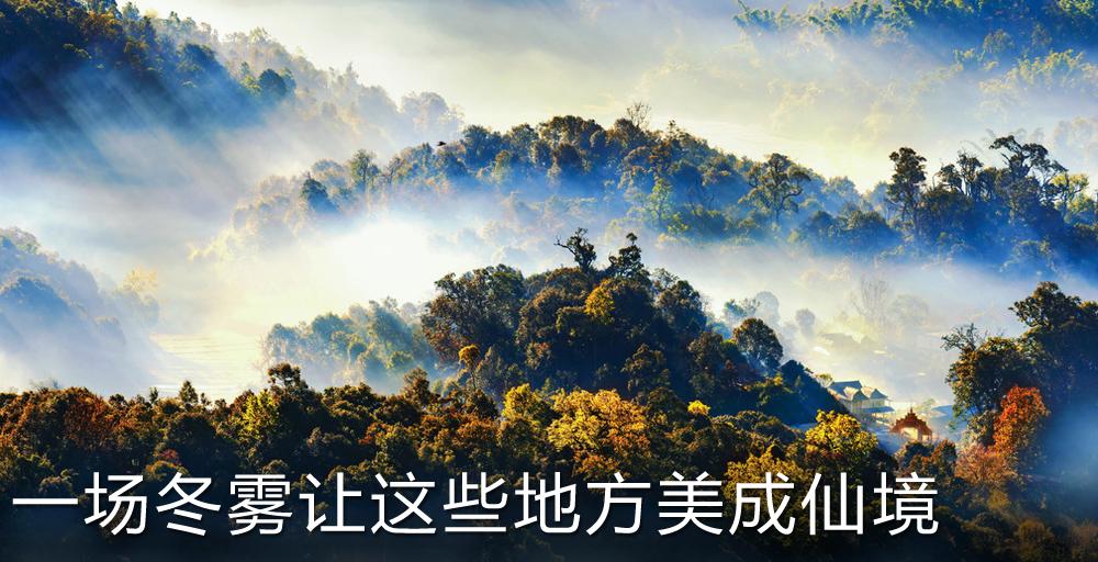 一场冬雾让这些地方美成人间仙境