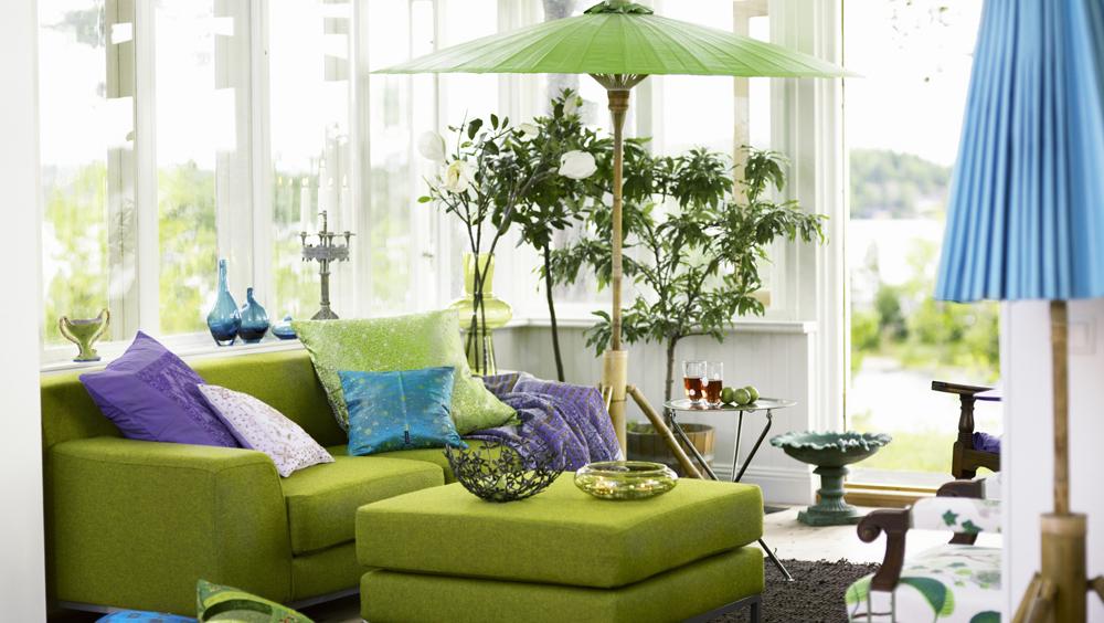 给家添一点生机勃勃的草木绿