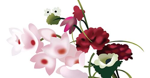 妙用植物调风水Spring Plantings