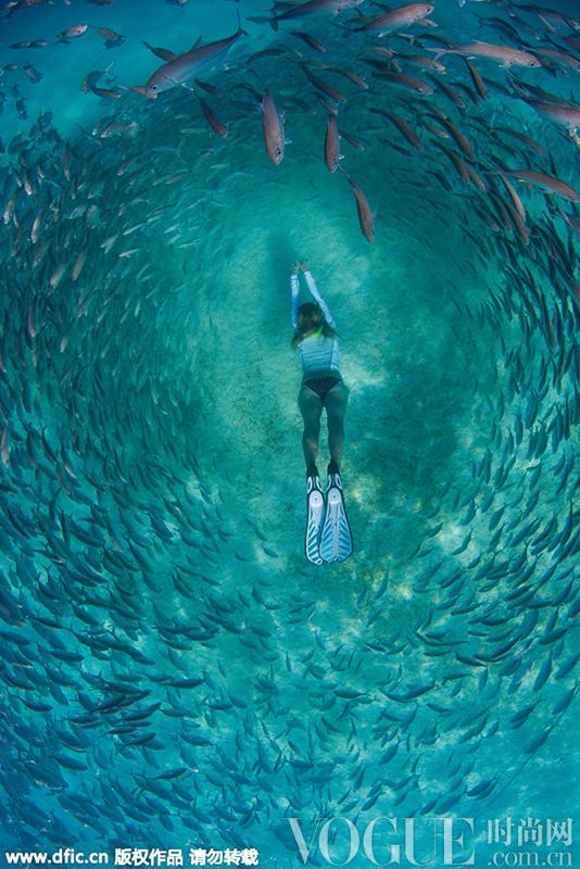时装大片 品牌新闻 精彩专题  海底摄影师steve de neef用水下照相机