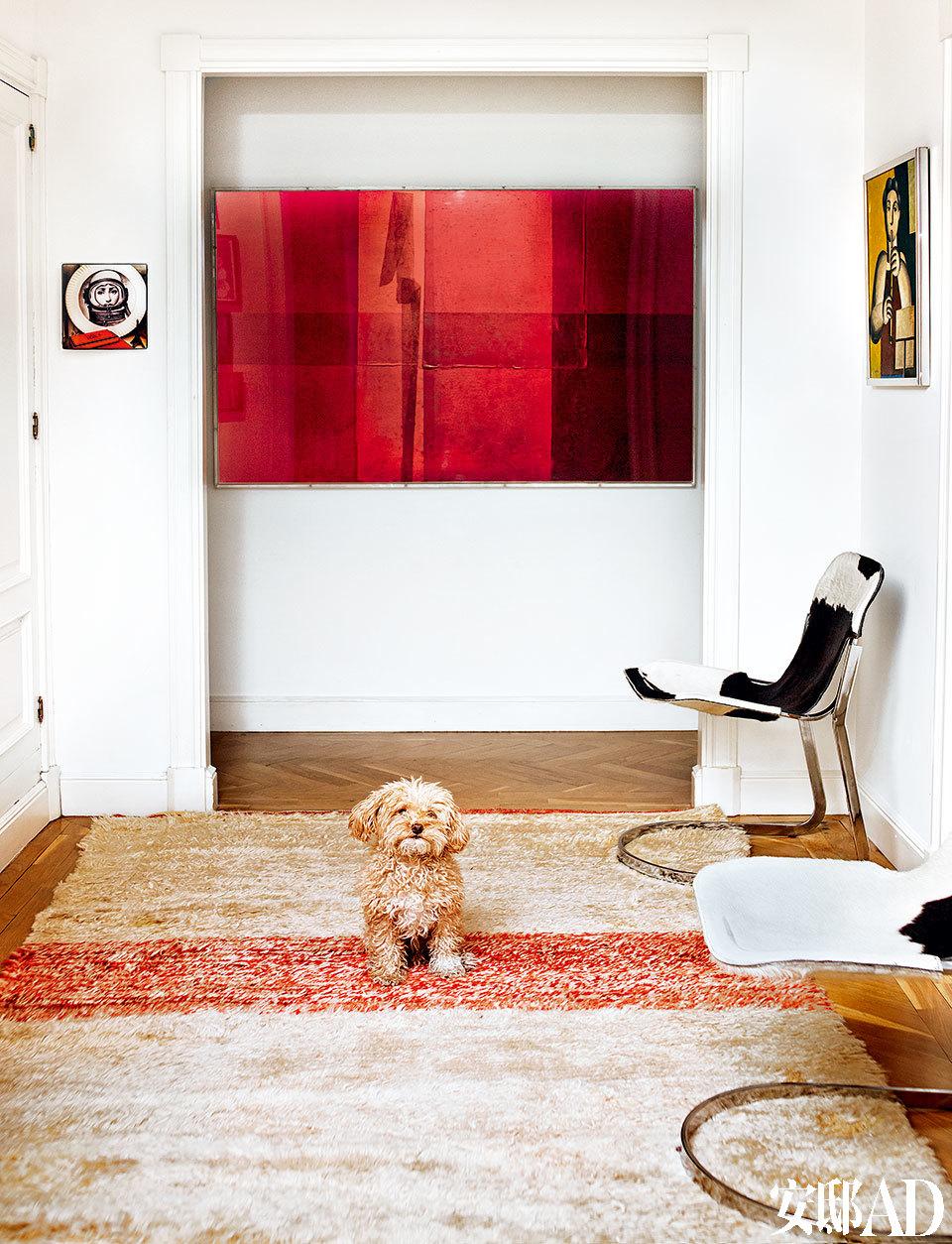 过厅里,Montse的宠物狗Smith蹲在购自EL 8的上世纪70年代的马皮椅前。