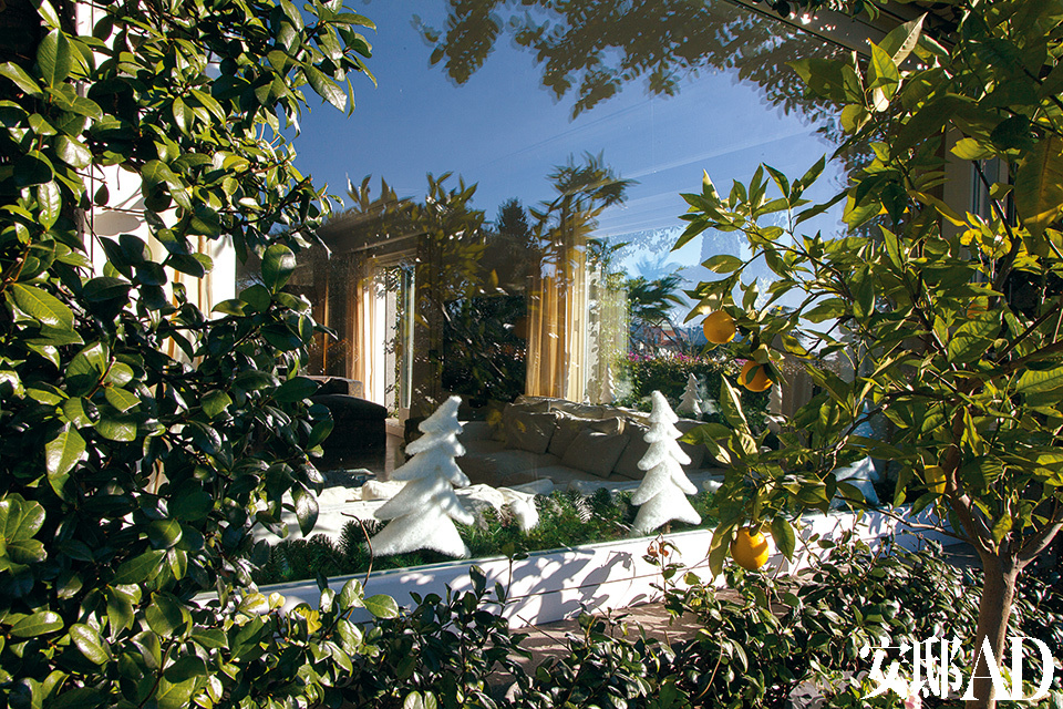 大阳台环绕整个公寓,Stefania按主人意愿将这里设计成了一个植株繁茂的空中花园。
