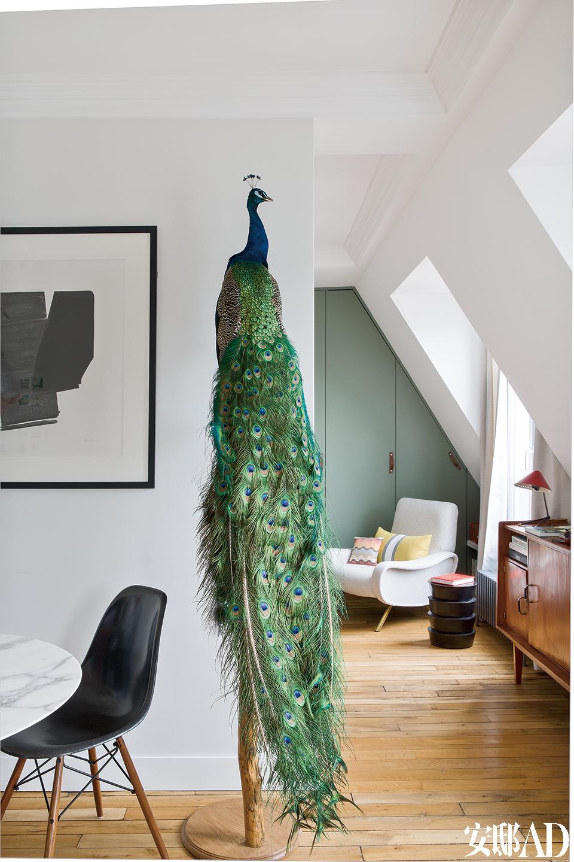 客厅的另一侧,墙上艺术品由Hans Hartung创作,极吸引眼球的孔雀标本摆件购自巴黎的Design et Nature。
