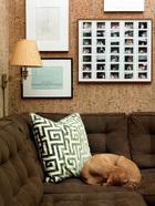 主人的爱犬也在这个空间里幸福地生活着。