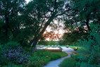 """整个庄园在一片橡树和榆树林的掩映中,真正做到了""""与自然契合""""。绿荫中的泳池分外静谧。"""