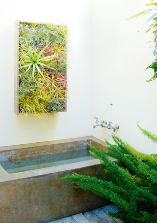 立体种植 Green Walls
