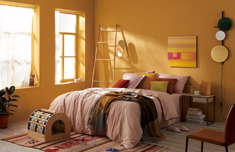 亲亲,这边建议你给卧室配一只橘猫呢