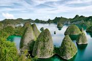 四大天王 印度尼西亚 拉贾安帕特群岛 摄影:Barry Kusuma 在印尼语中,拉贾安帕特群岛(Raja Ampat)意为...