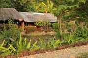 北碧府。于泰国的中部,是泰国最大的府,但是靠着缅甸,也是泰国最穷的府,有着茂密的丛林,和多个漂亮的国家...