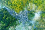 """村外樹木蔥郁、層巒疊嶂,村內白墻黑瓦充滿濃郁的傳統味道。人人都說這樣的鄉土人家就是""""世外桃源""""。當..."""