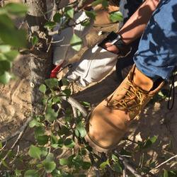 前人种树后人乘凉 我们绝不是说说而已 Timberland 科尔沁植树之旅纪实