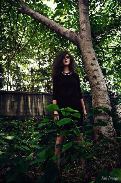 森林里的神秘女郎