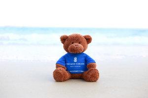 亚龙湾丽思卡尔顿酒店启动百万公益活动