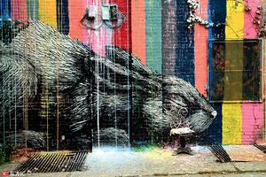 探访纽约街头涂鸦艺术