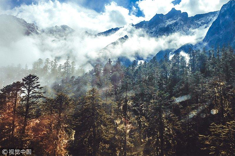 12月最佳旅行地:到了冬天,整个海螺沟一片白雪皑皑,露天温泉池的蒸汽滚滚腾空,原始森林中的绿树与奇花异草朦胧一片,影影绰绰。