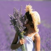 约会春天 遍览各国最美赏花地