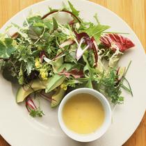 用什么酱料搭配沙拉最适合减肥时吃?