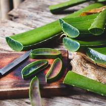 這6種超級食物 讓皮膚在夏季保持光澤-美食